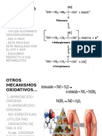 Desaminación Oxidativa Alee