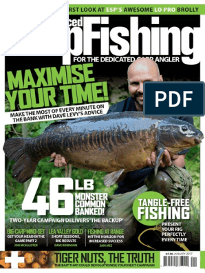 Thinking Anglers Carp Fishing Terminal Chunky Rubber O Rings