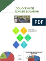 Produccion de Camaron en Ecuador