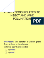 Adaptations Related to Insect and Wind Pollination