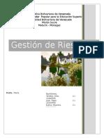 Gestión de Riesgo (UBV)