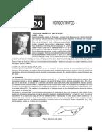 Hidrocarburos.pdf