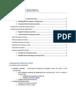 microprocesor_mir2.pdf
