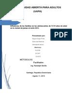 trabajo final metodología (7).docx