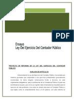 Ensayo- Prob.de La Contb