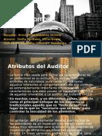 Perfil Del Auditor