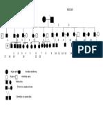 imagen pedigri genetica