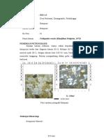 Petrografi basic.docx