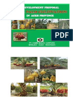 Date Palm Cultivation In Aceh