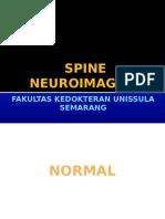 Spine Neuroimaging