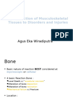 Chapter 3 - Reaction of Musculoskeletal Tissues to Disorders and Injuries