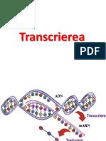 FDI Transcriere traducere - Copy.pdf