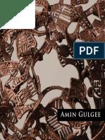Amin Gulgee