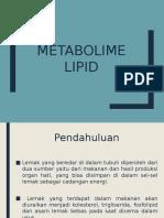 Metabolime Lipid