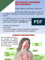 u2. de Los Alimentos a Los Nutrientes (9)