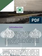 proyecto molecular - zapata , poma, victorio.pptx