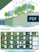 Guía Vegetación - Rutas Naturbanas