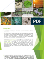 Ecosystem Report on SES