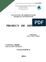 Lucrare de licenta Goia Taran Mihai.pdf