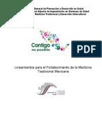 Lineamientos para el fortalecimiento de la MTM.doc