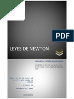 CastrejónHeredia_Anayelin_M14S3_LeyesdeNewton.pdf