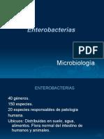 Enterobacteriaceae.ok