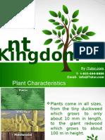 plantkingdom-130712004309-phpapp01