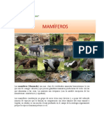 Qué son los mamíferos.docx