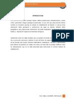 INFORME HUARIACA-MARGEN DERECHO.docx