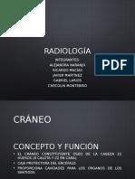 Radiologa 150208200449 Conversion Gate01