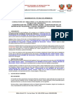 TDR  FINAL MODIFICADO PROFESIONALES3333333333-.docx