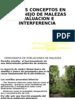 EVALUACION-DE-MALEZAS-2016 (2)