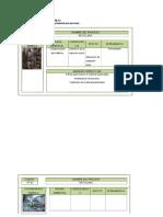 Fichas de Consecuencias111