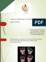 Lóbulo Frontal y Funciones Ejecutivas