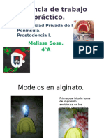 Evidencia de Trabajos Prácticos_prosto