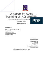 A Report on Audit Planning of ACI LIMITED