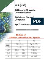 2. Cellular Network