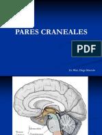 Pares Craneales I Al VI. Dr. Wirz