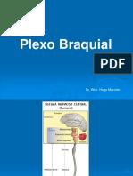 Plexo Braquial. Dr. Wirz 2014