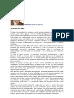 Artigo_Junho2010 João Ruivo