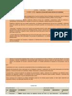ejemplo LENGUA E IDENTIDAD.docx