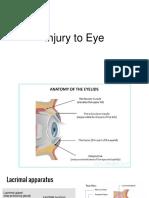 Injury to Eye