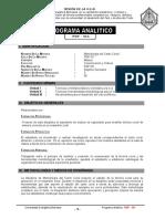 1.Programa Analitico Modelo