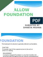 Foundation Shweta Mishra