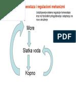 Osmotska Homeostaza i Regulacioni Mehanizmi