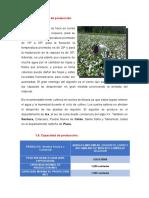 Plan Exportador (Taller)