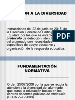 Atención-diversidad Instrucciones 22-06-2015