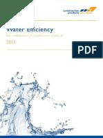 CPA Water Efficiency Report