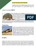 Especies en Extinción y Las Especies en Peligro