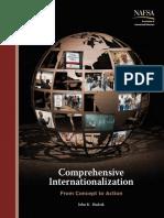 2011_Comprehen_Internationalization.pdf